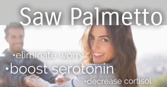 Curb anxiety, irritability, and low energy with this amazing herb — Saw Palmetto
